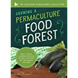 Growing a Permaculture Food Forest: How to Create a Garden Ecosystem You Only Plant Once But Can Harvest for Years (Backyard