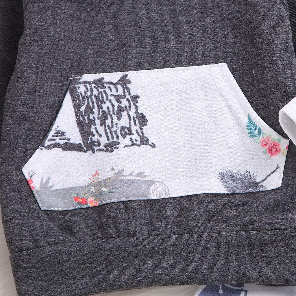 Toddler Kids Baby Girl 0-24 Months Cartoon Print Tops+Pants Hooded Outfits Sweatshirt Sets