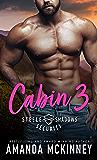 Cabin 3 (Steele Shadows Security Book 3)