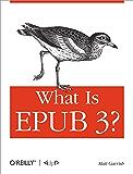 What is EPUB 3? (English Edition)
