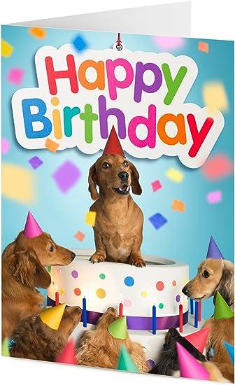 Superb Dachshund Sausage Dog And Friends Emerge From Giant Birthday Cake Funny Birthday Cards Online Unhofree Goldxyz