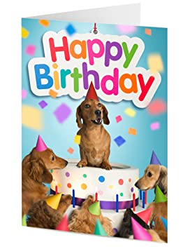 Dachshund Sausage Dog And Friends Emerge From Giant Birthday Cake Card