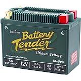 DELTORAN デルトラン バッテリーテンダー リチウムバッテリー LiFePO4 480CCA 480CLI