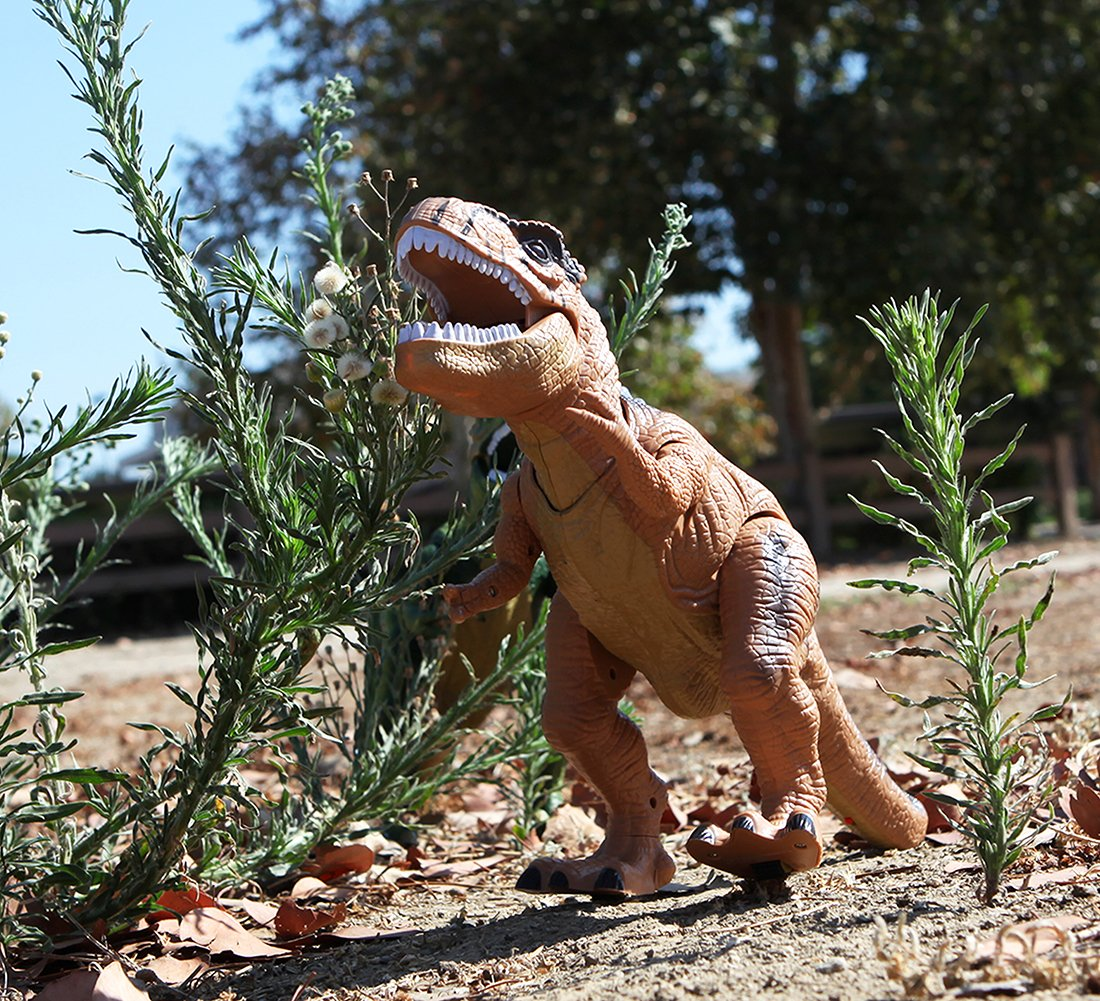Warp Gadgets - Remote Control LED Brown T-Rex Dinosaur 19 Inches - Walking Dancing, Roaring, Light Up RC Toy by Warp Gadgets (Image #7)