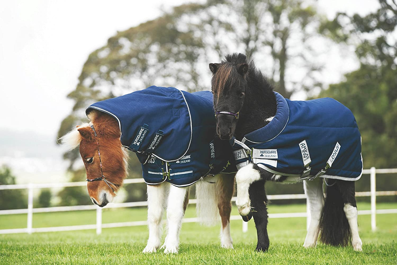 Horseware Amigo Petite Plus安定ブランケット200 g B014GH7IMK 42