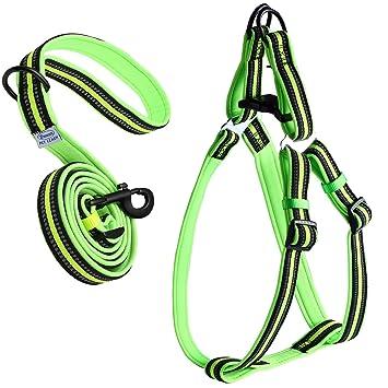Buy ARIKON Adjustable Padded Reflective Dog Harness and ... on
