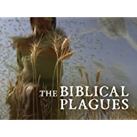 The Biblical Plagues
