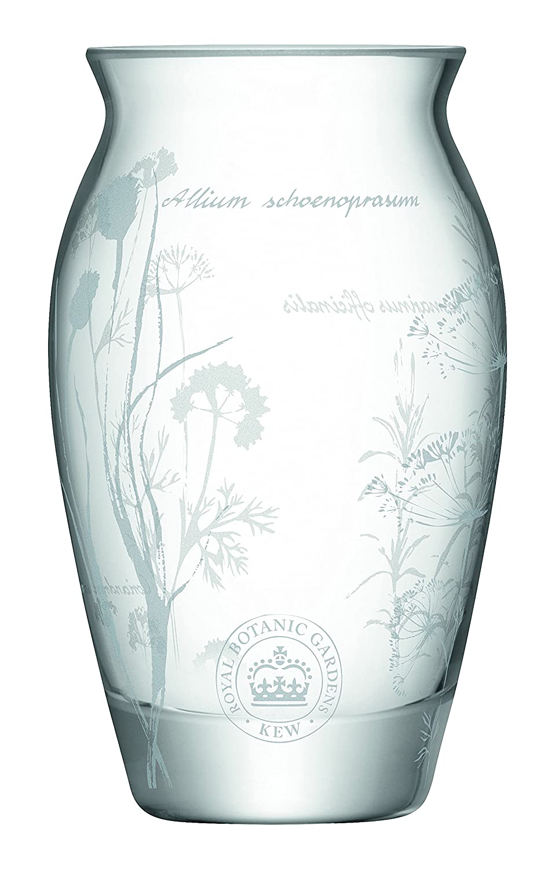 LSA International Rbg Kew Bud Vase H12cm, Clear G1300-12-223