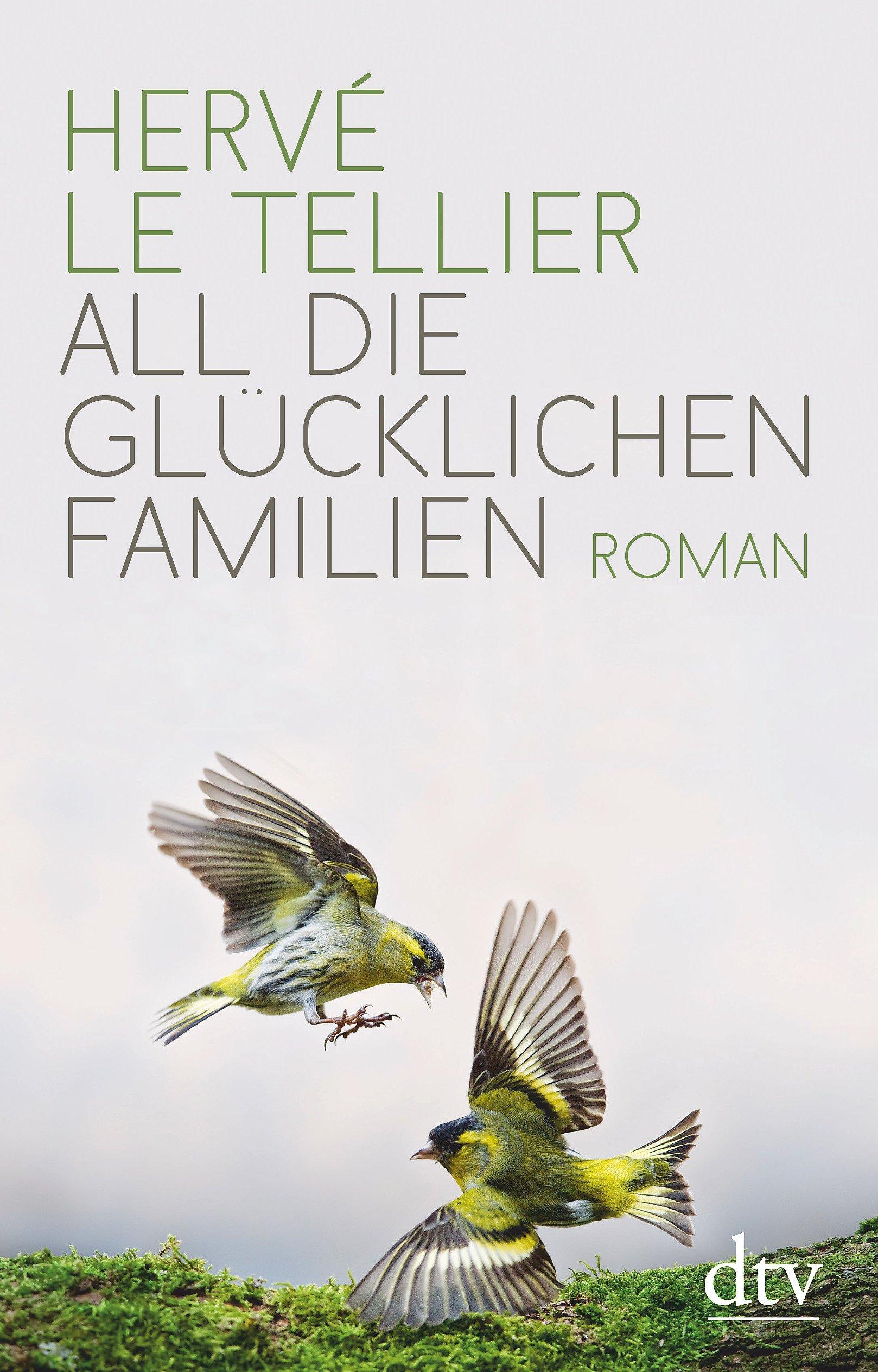 All die glücklichen Familien: Roman Gebundenes Buch – 26. Oktober 2018 Hervé Le Tellier Jürgen Ritte Romy Ritte dtv Verlagsgesellschaft