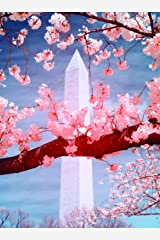 CHERRY BLOSSOMS: Thirty Postcards Card Book