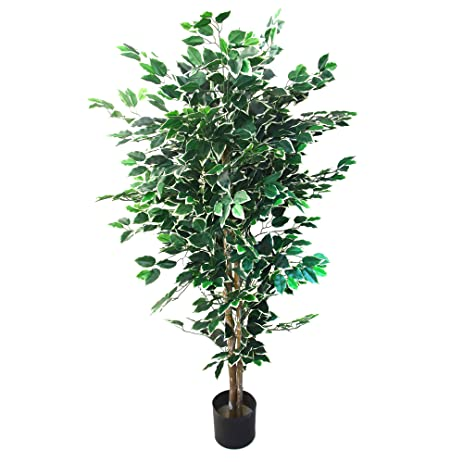 Amazon.com: Artificial Ficus Tree with Variegated Leaves and ...