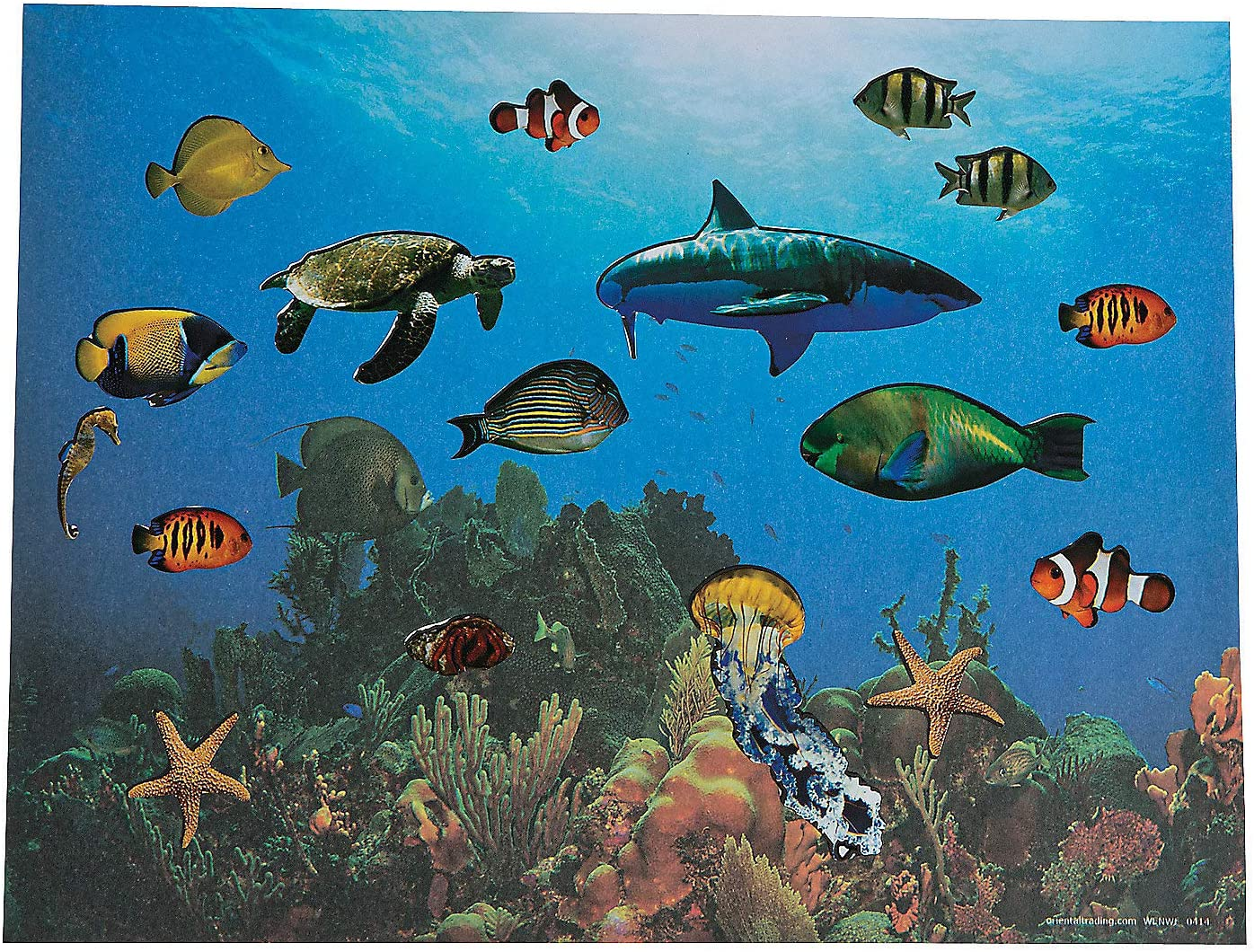 A Under The Sea Realistic Sticker Scene Stickers Stationery Fun Express Scene Lrg Make - 12 Pieces