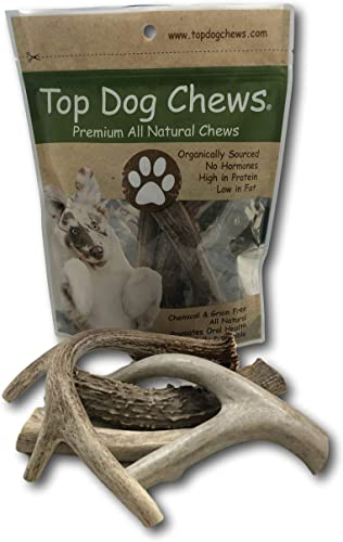 Top Dog Chews Large Deer Antler 3 Pack – Dog Chew US Wild Sheds