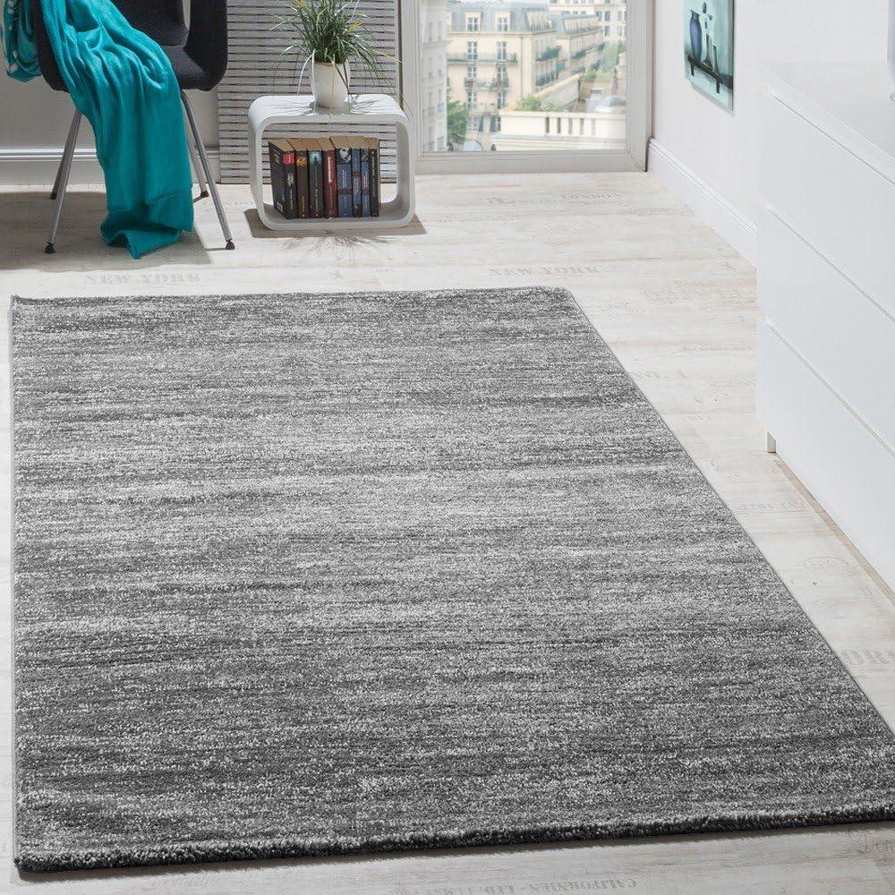 Teppich Wohnzimmer Grau Modern S-XXL Kurzflor 160x230 200x300 300x400