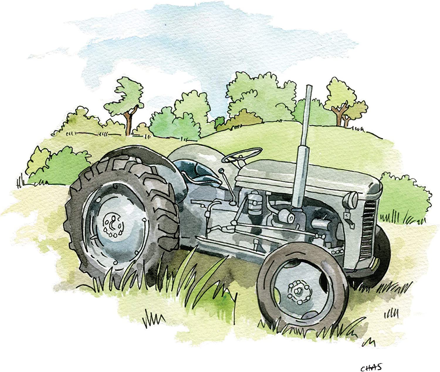 A5 Greeting Card Birthdays etc AC70 Blank Inside for Your own Message /& cellophane Wrapped with Envelope Invitations Grey Ferguson Tractor for Thank yous