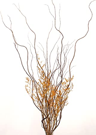 Amazon Greenfloralcrafts Diy Curly Willow With Autumn Orange
