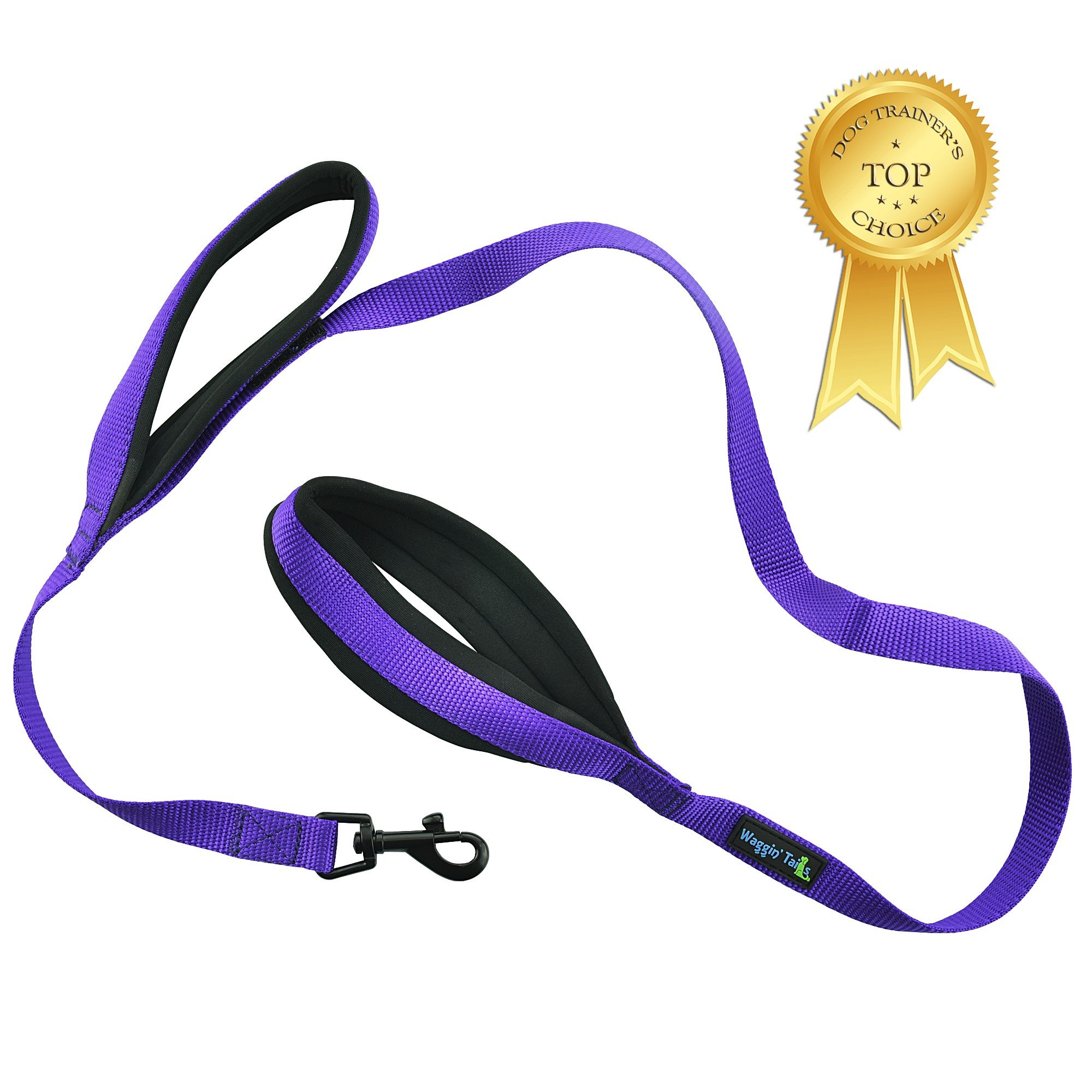 Soft and Thick Double Handle Premium Nylon 4FT x 3/4Inch Leash - Dual Soft Padded Handles for Ultimate Control - For Small to Large Dogs - ''Classic Comfort'' in 4 Vibrant Colors (Vibrant Purple)
