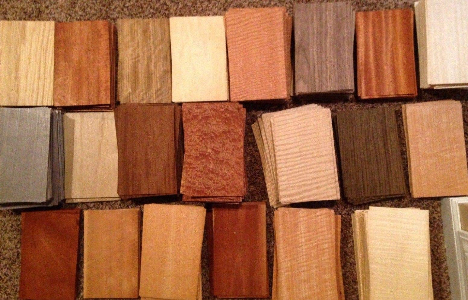 Wood Veneer Variety Pack Domestic Exotic 65 Pieces Arts Crafts Fingerboard Marquetry by Generic