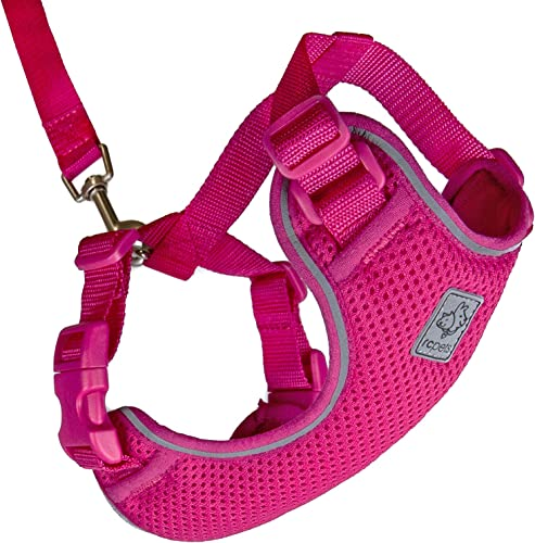 RC-Pet-Products-Primary-Collection-Adventure-Kitty-Harness