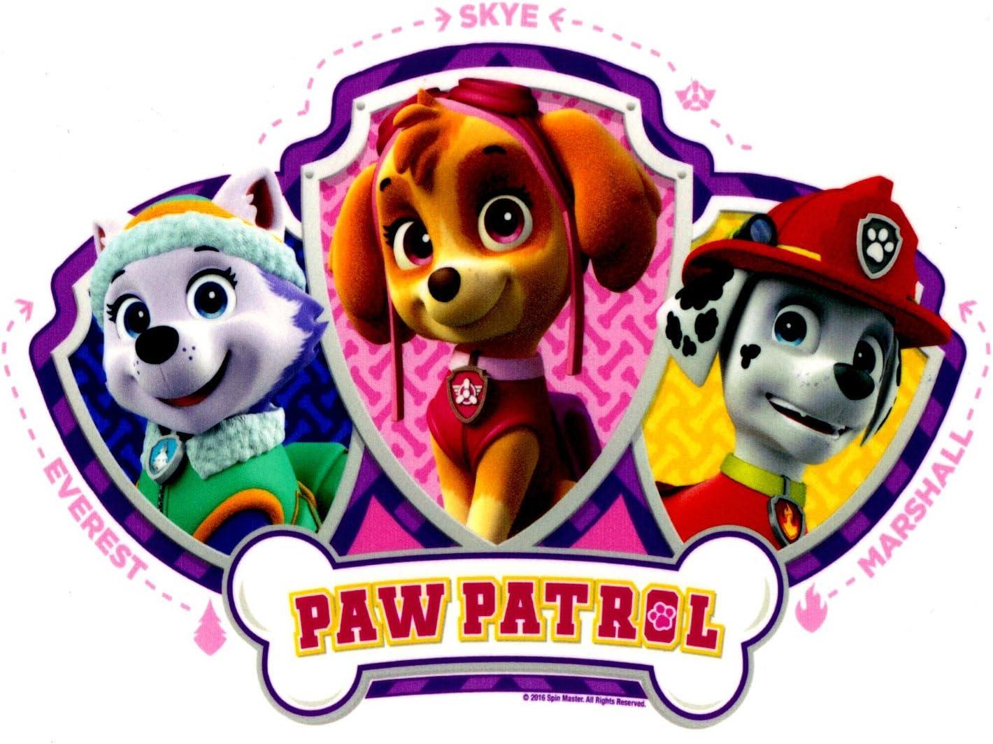 Amazon.com: Paw Patrol Skye, Everest & Mars oficial ...