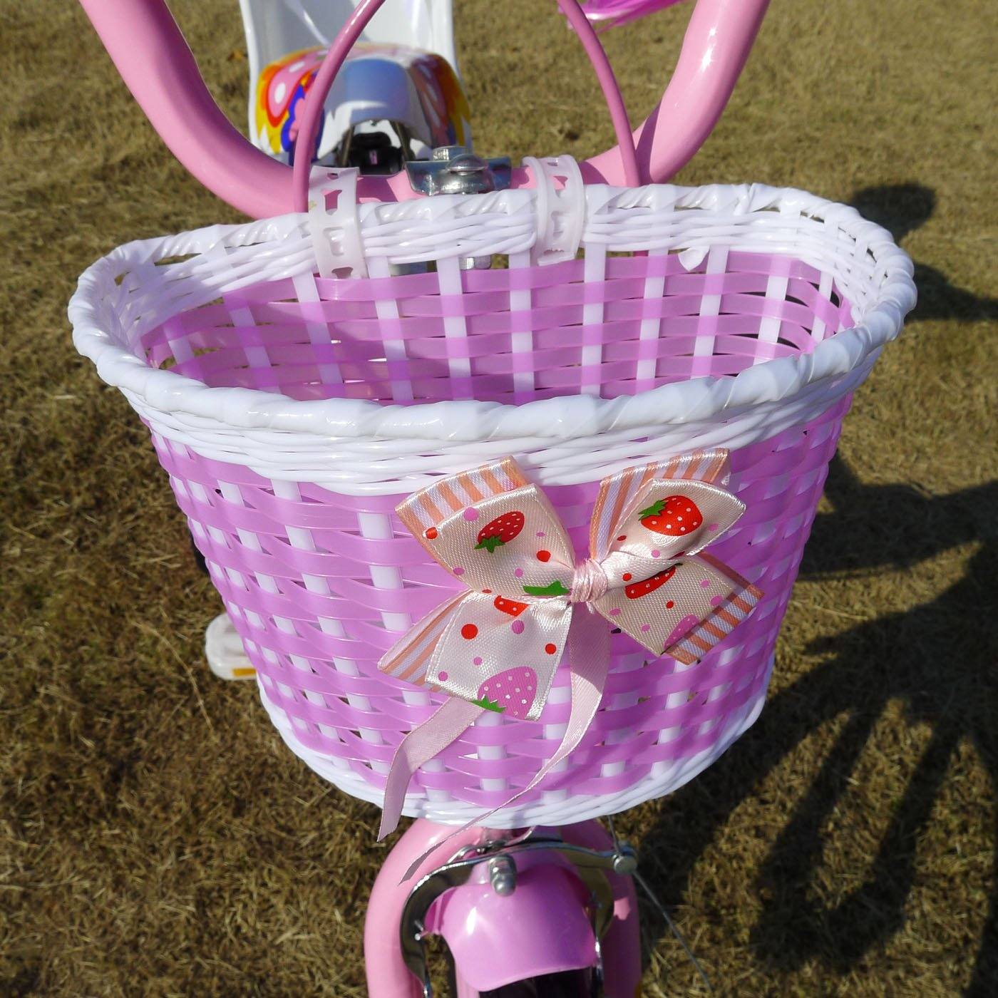 American Phoenix 12-Inch Wheel Girls Bicycle with Seat by American Phoenix (Image #5)