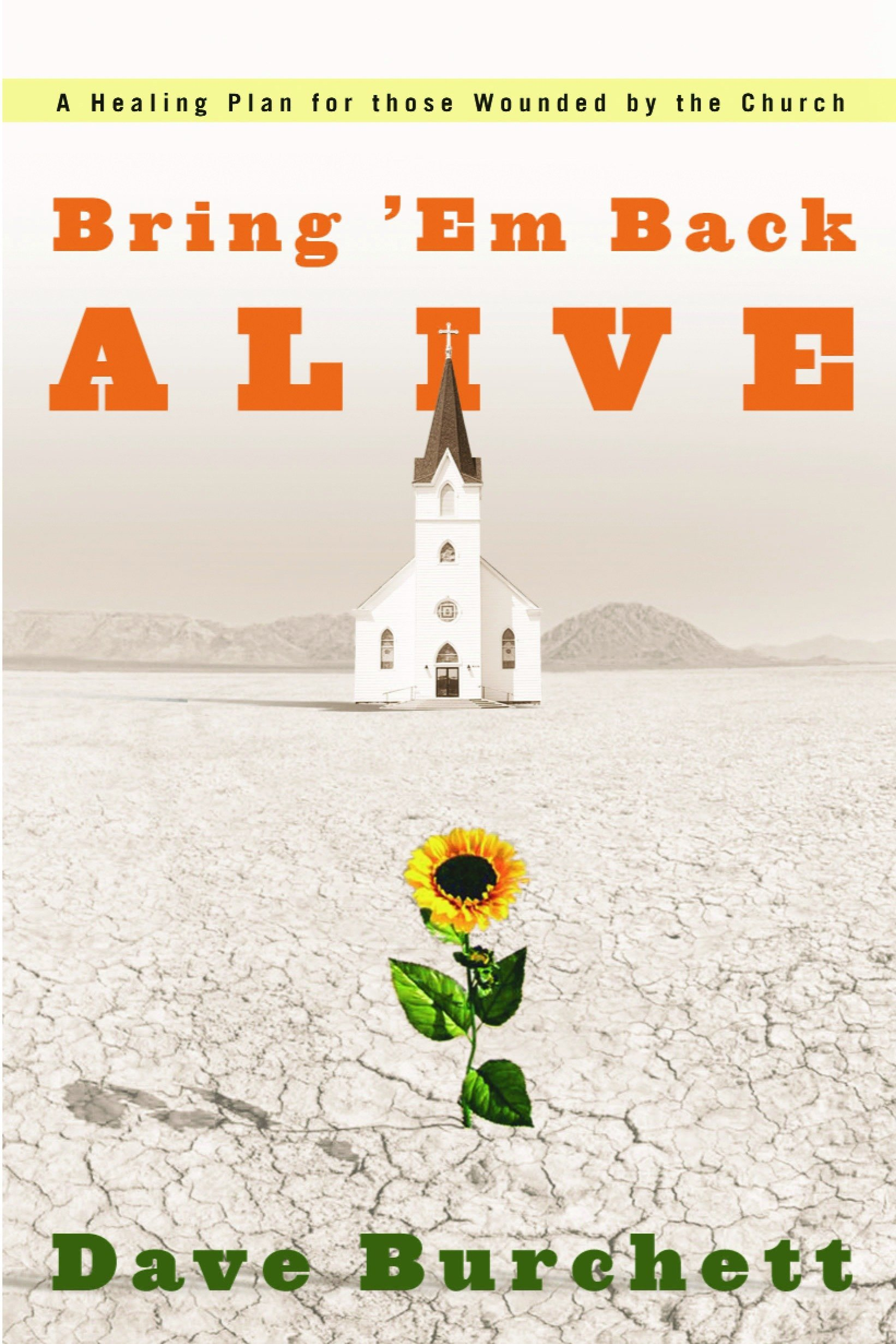 Bring em Back Alive: A Healing Plan for Those Wounded by the ...