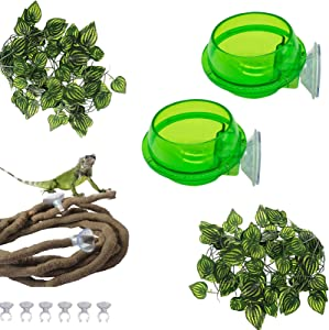PINVNBY Reptile Suction Cup Feeder Chameleon Bowl Anti-Escape Lizard Food Bowl Worm Live Fodder Container Translucent Home Pet Feeder Supplies Accessories for Gecko,Snakes,Bearded Dragon and Tortoise