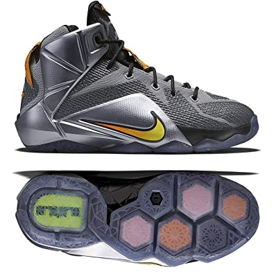 Nike Lebron XII GS 12 Instinct Youth Boys Girls Basketball Shoes 685181-080  (4.5 6400093bf301