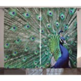 Peacock 10x12 FT Backdrop Photographers,Peacock Tail Feathers Tropical Exotic Animals Close-up Picture Artwork Background for Party Home Decor Outdoorsy Theme Vinyl Shoot Props Green Mustard Navy