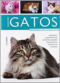Razas de Gatos de la A a la Z: Características, Estándares, Anatomía,