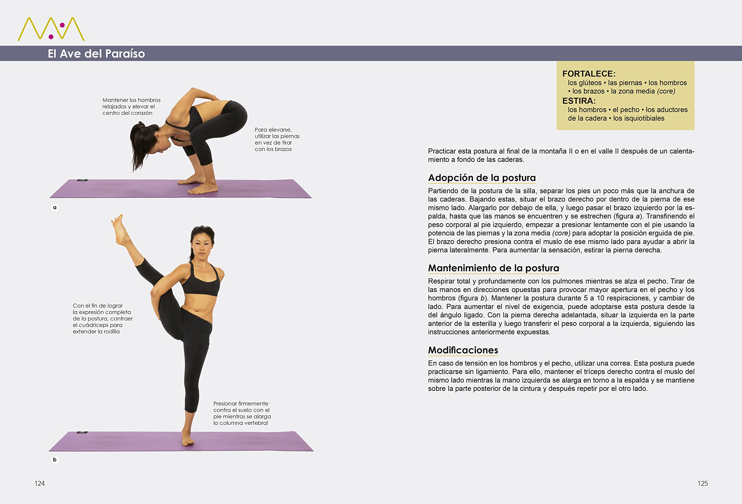 Yogafit : el programa de ejercicios de éxito mundial para ...