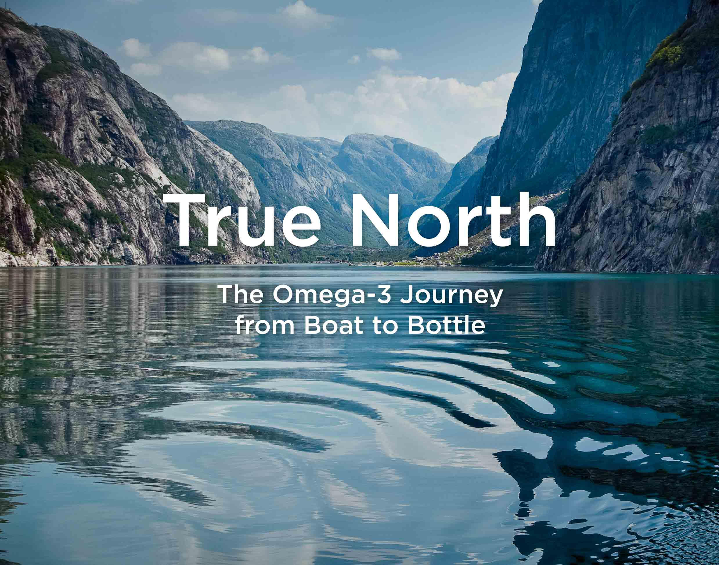 Nordic Naturals Omega-3 Soft Gels - Omega-3 Essent...