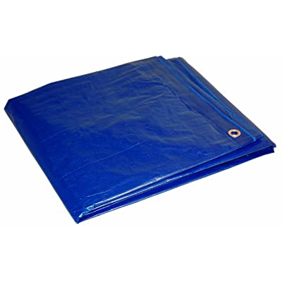 16x20 Multi-Purpose Blue Economy Poly Tarp (16'x20')
