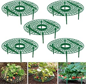 Medoore 5 Pack Strawberry Supports, Adjustable Strawberry Growing Racks Plant Climbing Rack Vine Pillar Garden Stand Balcony Vegetable Rack for Keeping Fruit Elevated to Avoid Ground Rot