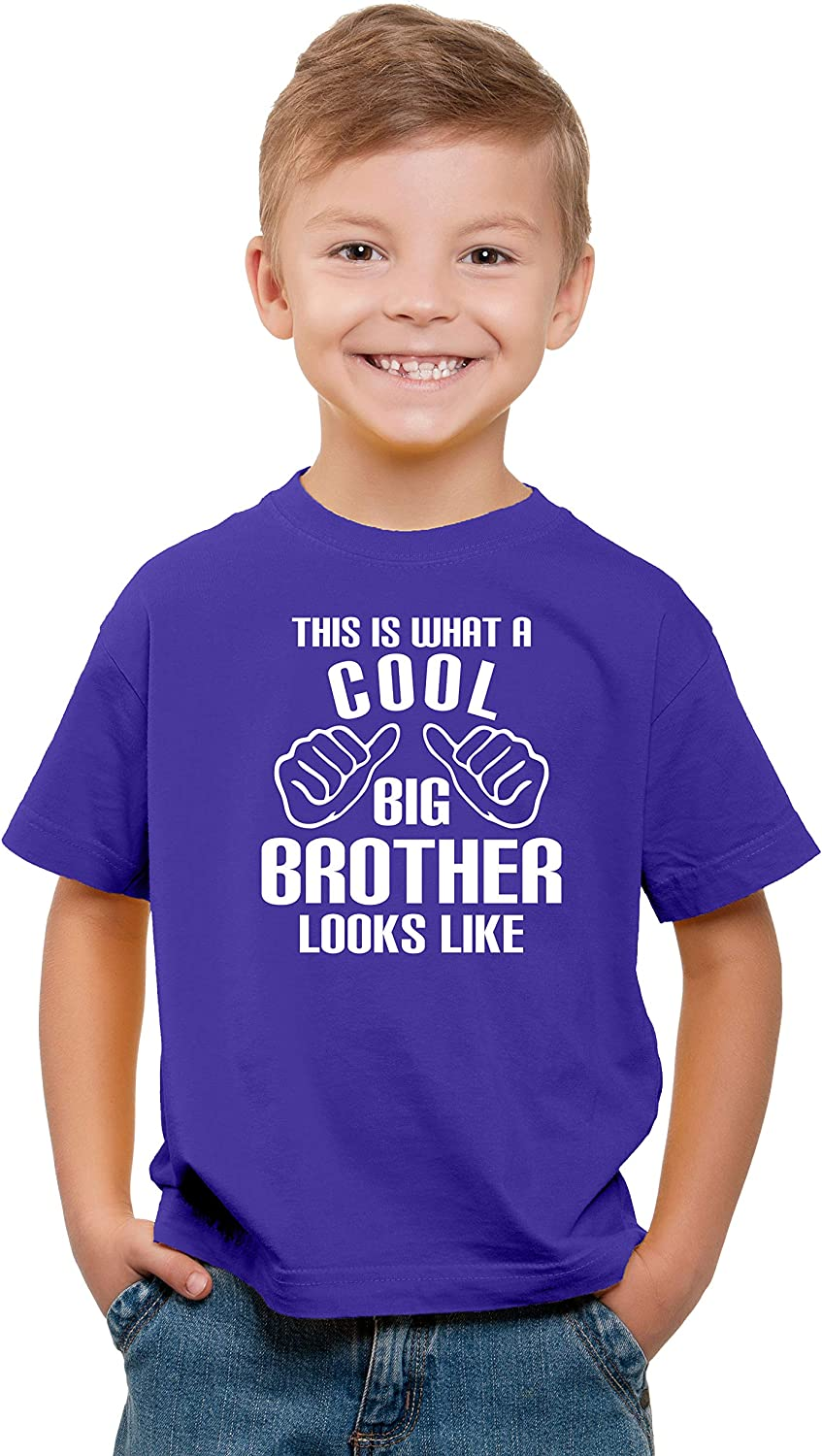 Funny Older Sibling Novelty Kids T-Shirt Witty Fashions This is What A Cool Big Brother Looks Like