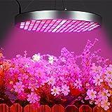 50W LED Grow Lights Bulb, Osunby UFO 250 LEDs