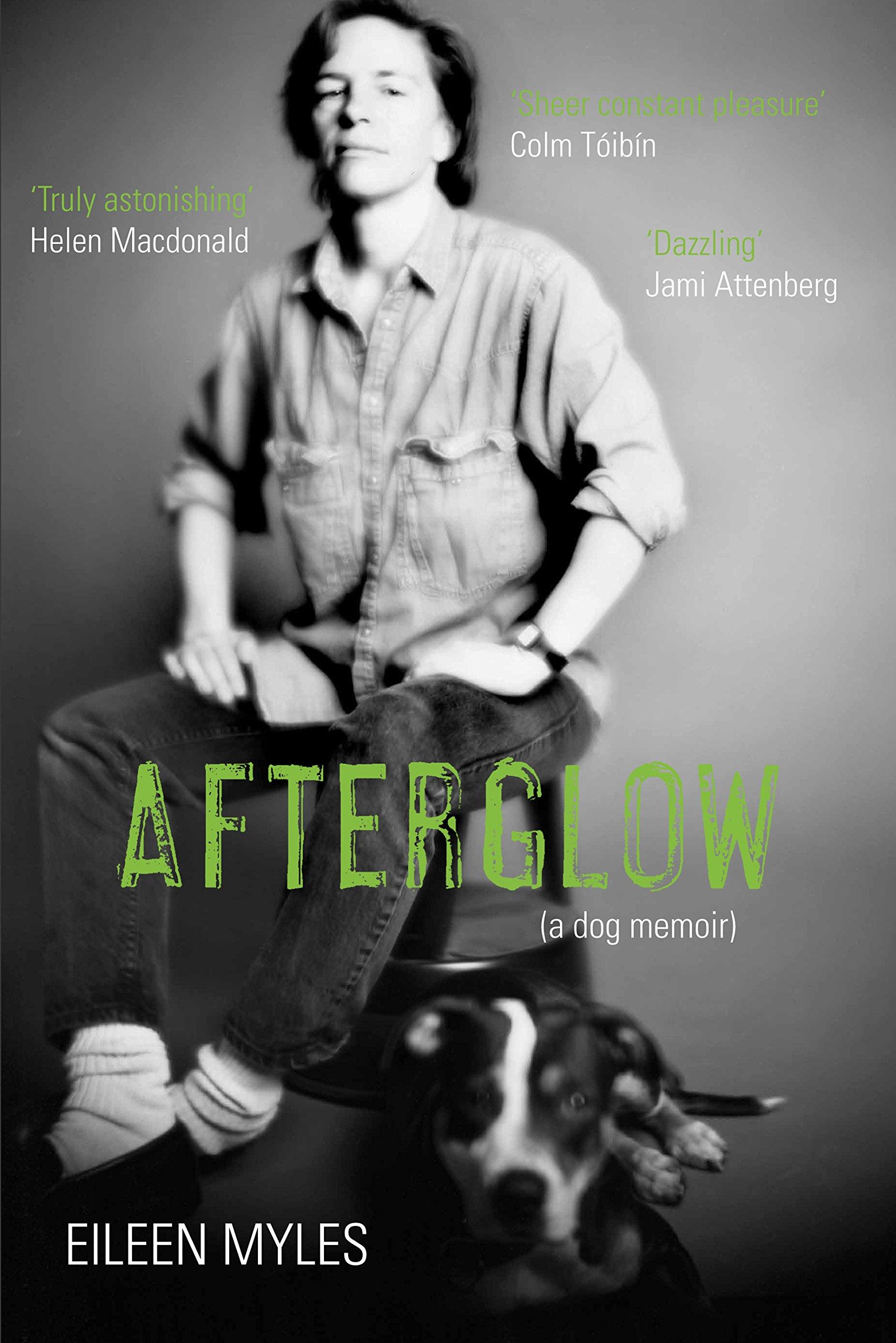 Download Afterglow: A Dog Memoir pdf epub