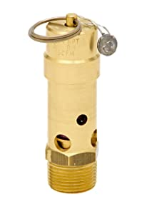 Control Devices SB75-0A175 SB Series Brass Soft Seat ASME Safety Valve, 175 psi Set Pressure, 3/4 Male NPT