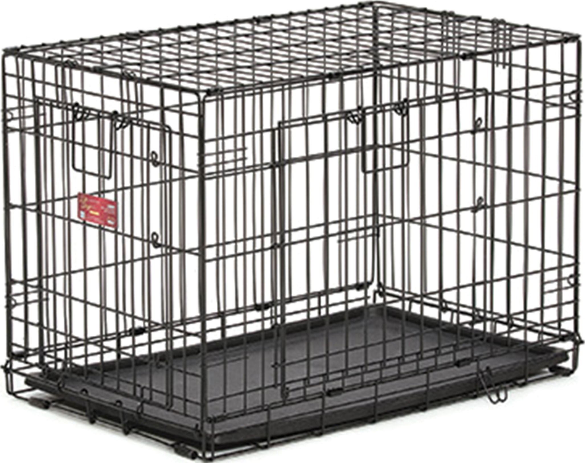 MidWest Homes for Pets Life Stages ACE Double Door Dog Crate, 22-Inch