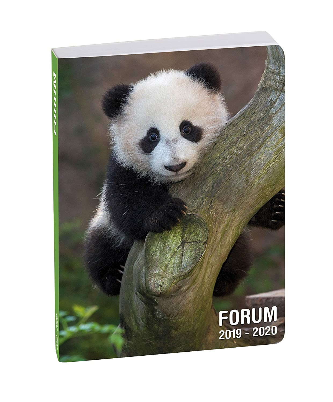 Visuel Panda Exacompta 1 Agenda Journalier Forum Animaux 12 x 17 cm Ao/ût 2019 /à Juillet 2020