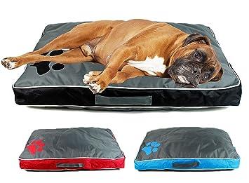 MTS - Cojín impermeable de doble cara con funda lavable, de tamaño mediano, para perros: Amazon.es: Productos para mascotas