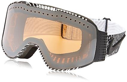 b3a012172396 nike sb snowboarding goggles