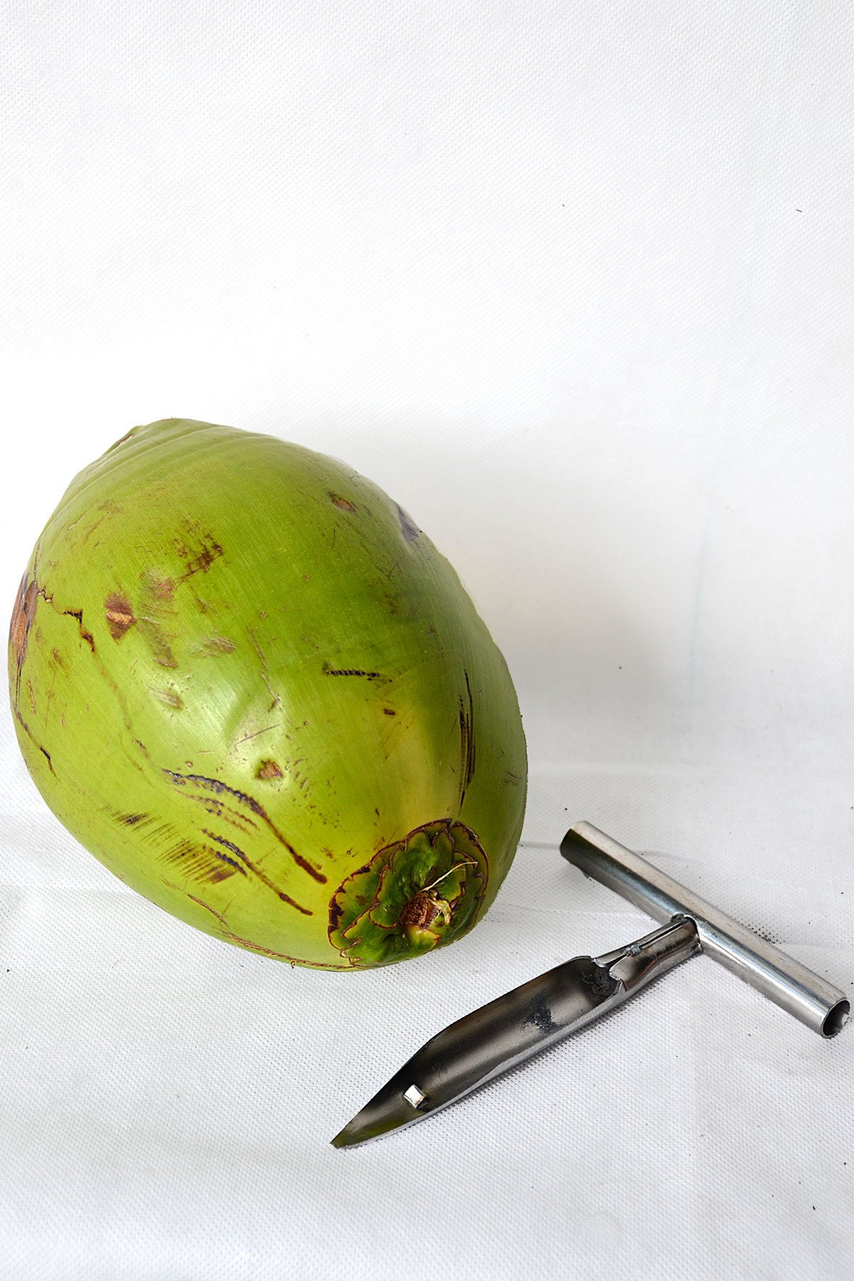 Combo, 3 Fresh Green Coconuts and Metal Cutter Opener Tool, for Drinking (No Ship to CA)