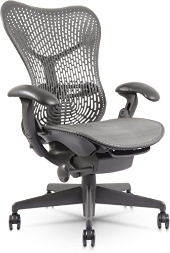 Mirra Chair-Highly Adjustable