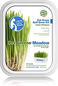 Pet Greens Live Cat Grass; Certified Organic & GMO-Free 100% Wheatgrass Or Variety Blend of Oat, Rye & Barley Grasses; Grown in The USA