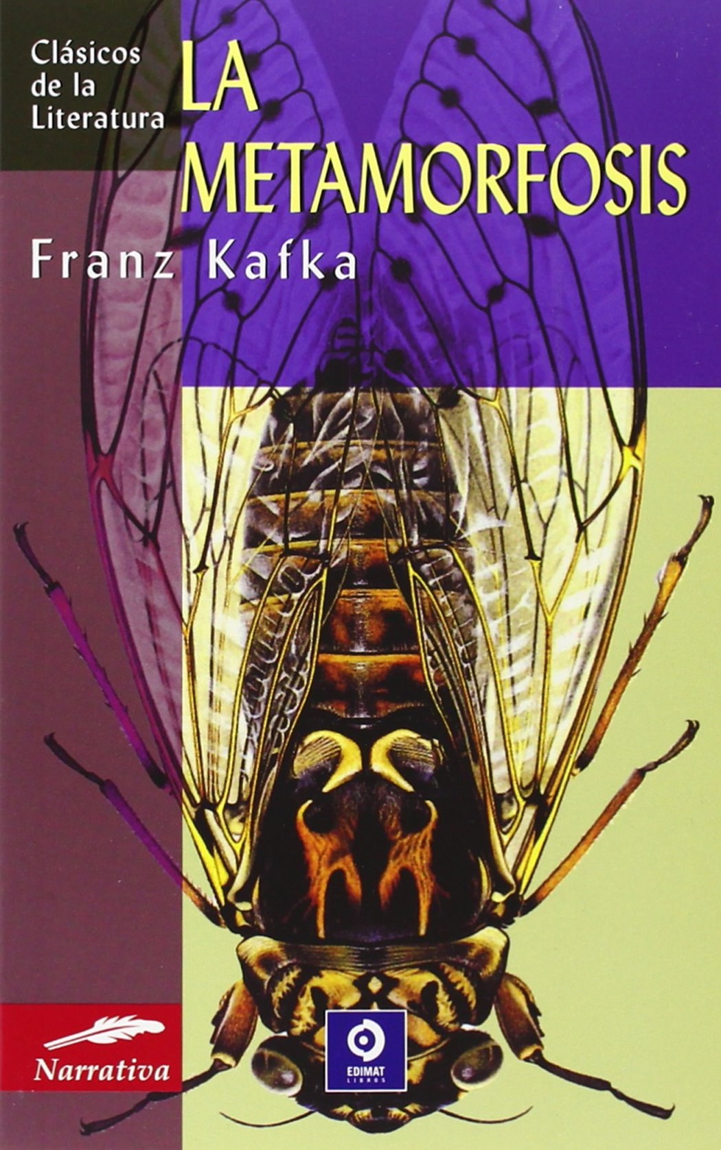 Amazon.com: La Metamorfosis (Clásicos de la literatura series) (Spanish  Edition) (9788497643474): Franz Kafka: Books