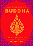 A Little Bit of Buddha: An Introduction to Buddhist Thought (Little Bit Series)