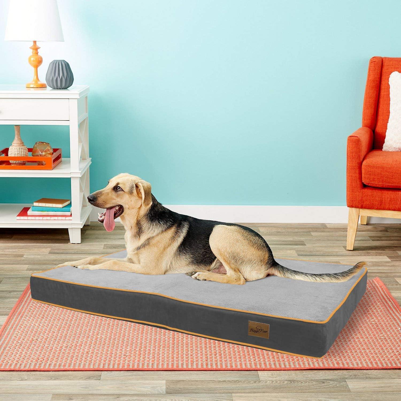Cama C/ómoda y Suave para Mascotas BingoPaw Cama de Espuma para Perros 71 x 43 x 10cm Colchoneta Perro Impermeable con Funda Desmontable y Lavable