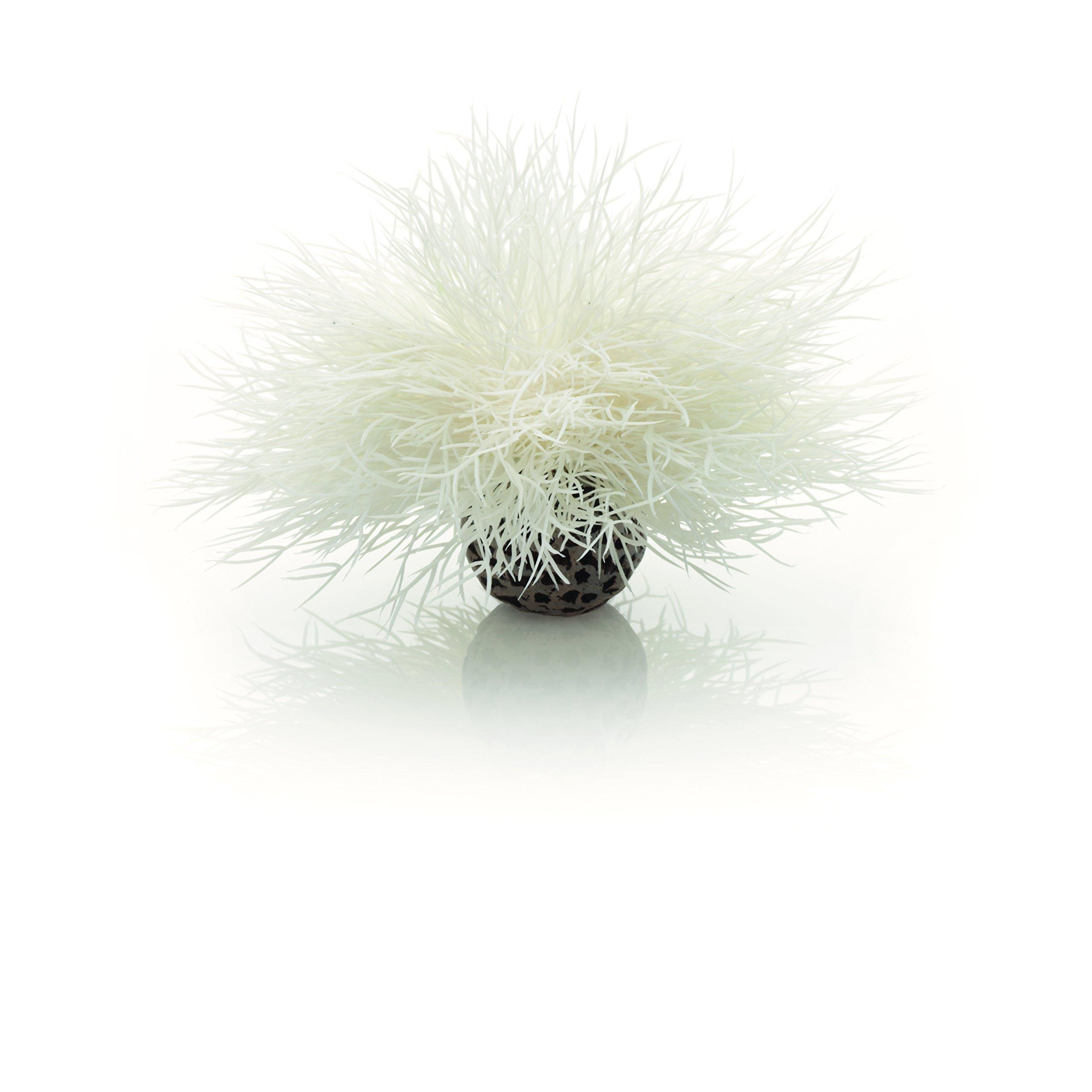 biOrb Sea Lily, White