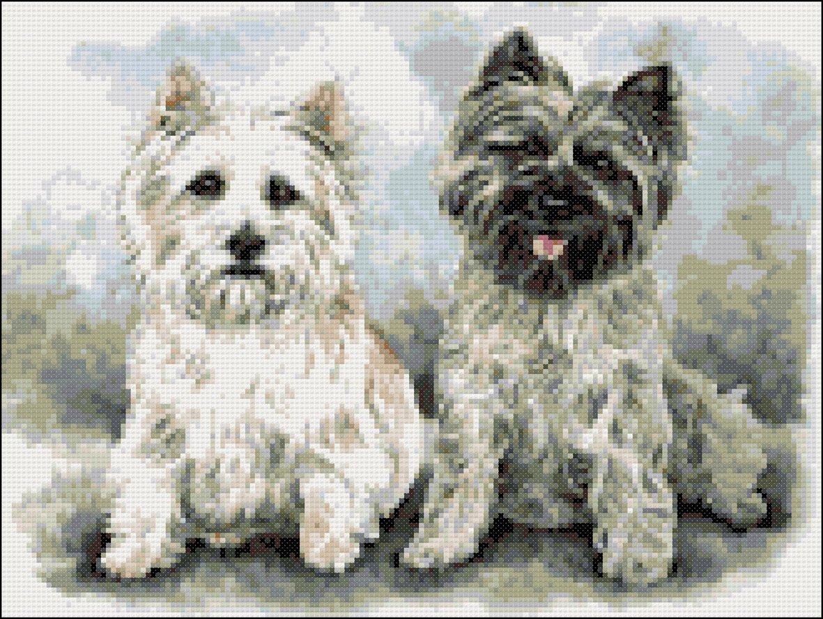 Cross Stitch Chart Kit Cairn Terrier Dog